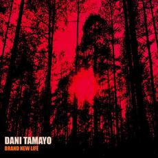 Brand New Life mp3 Single by Dani Tamayo