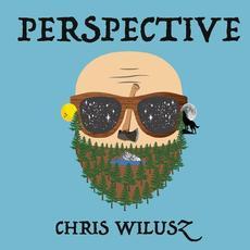 Perspective mp3 Album by Chris Wilusz