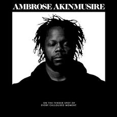 On the Tender Spot of Every Calloused Moment mp3 Album by Ambrose Akinmusire