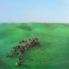 Bright Green Field mp3 Album by Squid