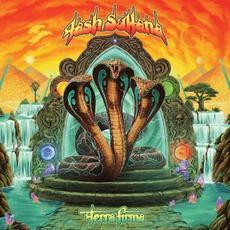 Terra Firma mp3 Album by Tash Sultana
