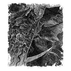 Quando a Morte Chama por Nós mp3 Album by A Forest of Dreams