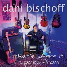 That's Where It Comes From mp3 Album by Dani Bischoff