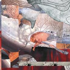 Wuddaji mp3 Album by Theo Parrish