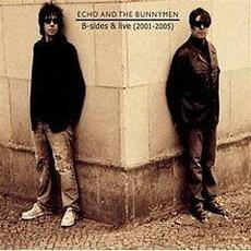 B-Sides & Live (2001-2005) mp3 Artist Compilation by Echo & The Bunnymen