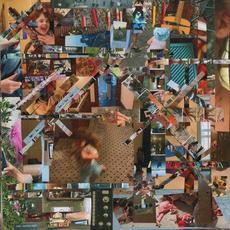 Reason to Live mp3 Album by Lou Barlow
