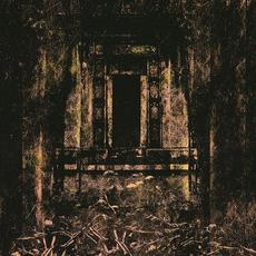 Foul and Defiled mp3 Album by Coffin Lurker