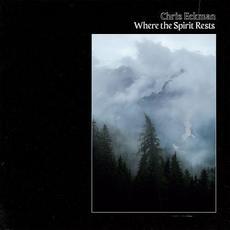 Where The Spirit Rests mp3 Album by Chris Eckman