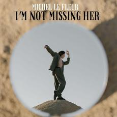 I'm Not Missing her mp3 Single by Michel Le Fleur