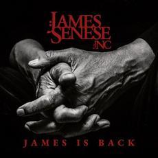 James is Back mp3 Album by James Senese
