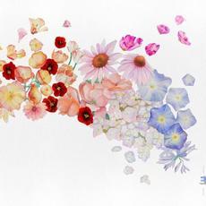Flor mp3 Album by Gretchen Parlato