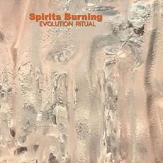Evolution Ritual mp3 Album by Spirits Burning