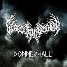 Donnerhall mp3 Album by Vergeltungsschlag