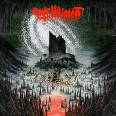 A Scream From the Tomb Below mp3 Album by Witch Vomit