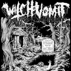 The Webs of Horror mp3 Album by Witch Vomit