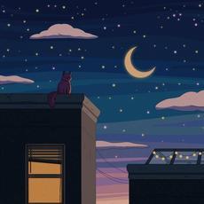 City Nights mp3 Album by Purrple Cat