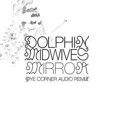 Mirror mp3 Single by Dolphin Midwives