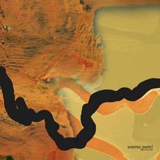 Big Scale Stuff mp3 Album by Somme Partel