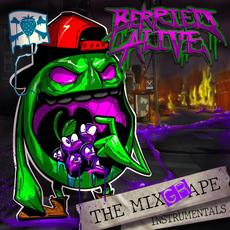 The Mixgrape Instrumentals mp3 Album by Berried Alive
