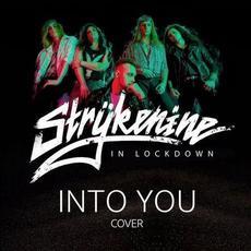 Into You mp3 Single by Strykenine