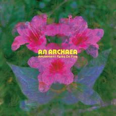 An Archaea mp3 Album by Amusement Parks on Fire