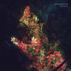 Tasman Sea mp3 Album by Jack Northover