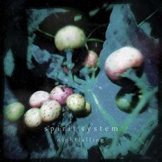 Nightfalling mp3 Album by Spirit System