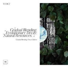 Gradual Blending mp3 Album by Oscar Mulero