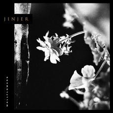 Wallflowers mp3 Album by Jinjer