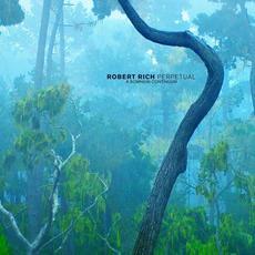 Perpetual: A Somnium Continuum mp3 Album by Robert Rich