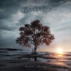 Kohti valoa mp3 Album by Maailmanpuu