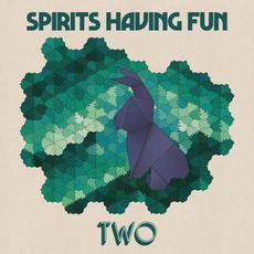 Two mp3 Album by Spirits Having Fun