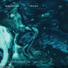 Eternal Blue mp3 Album by Spiritbox