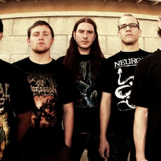 The Faceless Music Discography