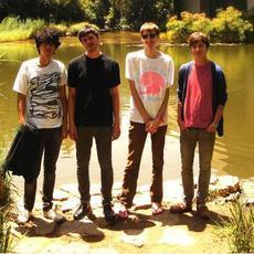 Deerhunter Music Discography
