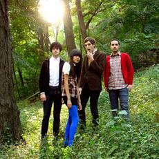The Pains Of Being Pure At Heart Music Discography