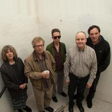 The Feelies Music Discography