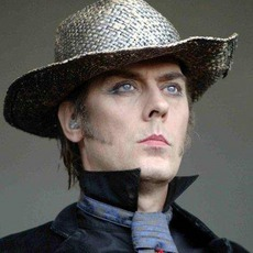 Peter Murphy Music Discography