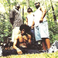 Goodie Mob Music Discography