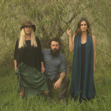 The Waifs Discography