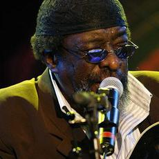 James 'Blood' Ulmer's Blues Experience