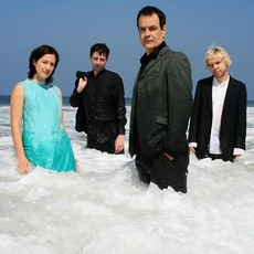 The Wedding Present Music Discography