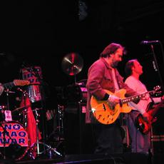 Steve Earle & The Dukes Music Discography