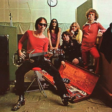 Flamin' Groovies Music Discography