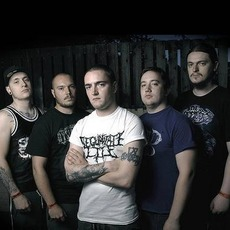 Ingested Discography