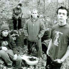 Milkweed Music Discography