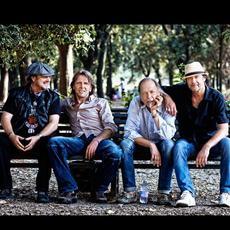 The Hamburg Blues Band