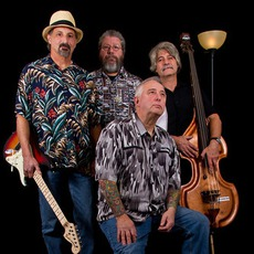 The JT Blues Band Music Discography