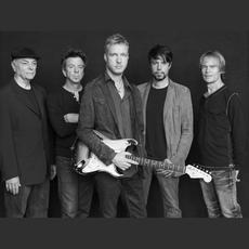 The Kenny Wayne Shepherd Band Music Discography