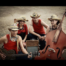The Hillbilly Goats Discography